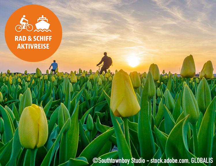 Holland mit dem Rad entdecken