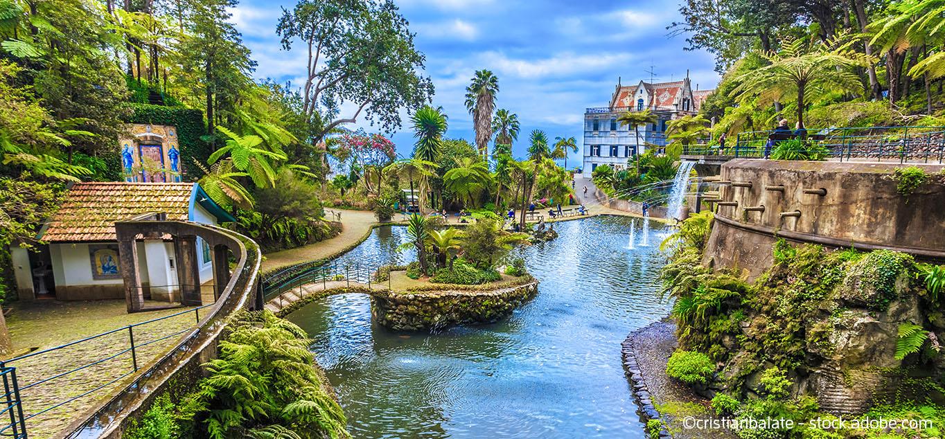 Charming Madeira