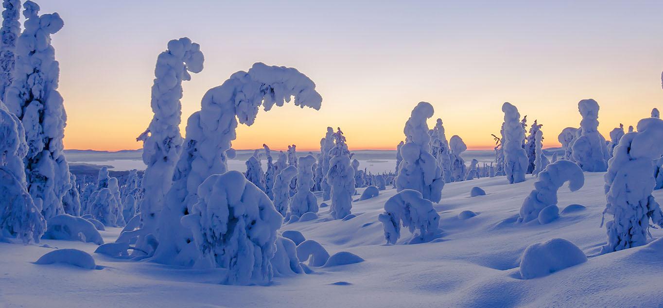 Finnland - Winterwunderland im hohen Norden