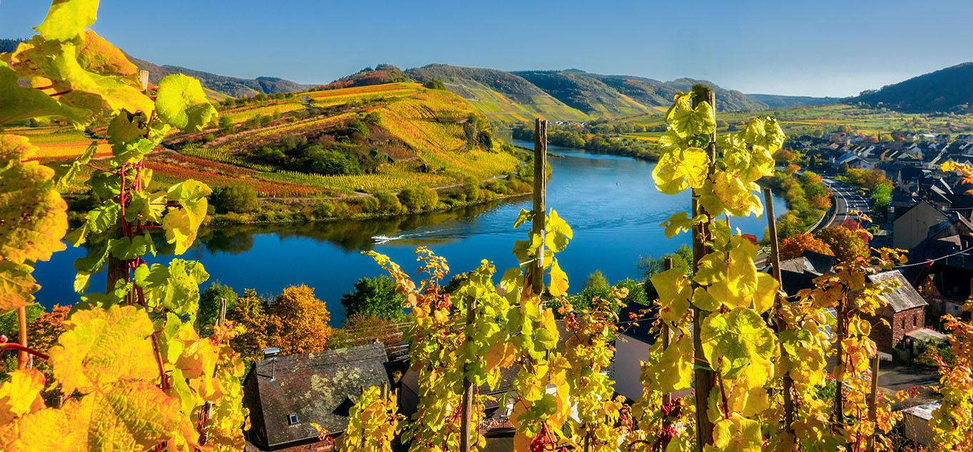Rheinkreuzfahrt - Goldener Oktober auf Rhein & Mosel